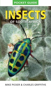 BooklReview-InsectsofSouthAfrica-Cover-Feb2016