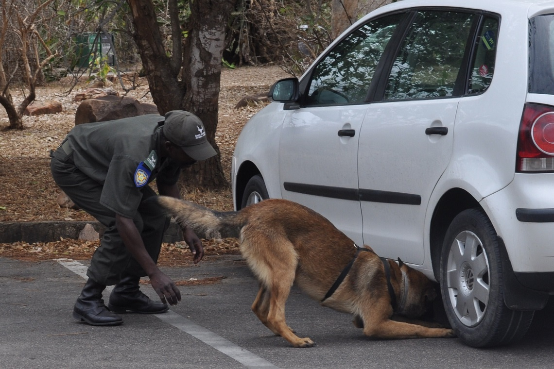 Canine unit-Kruger National Park-CourtSANParks-2