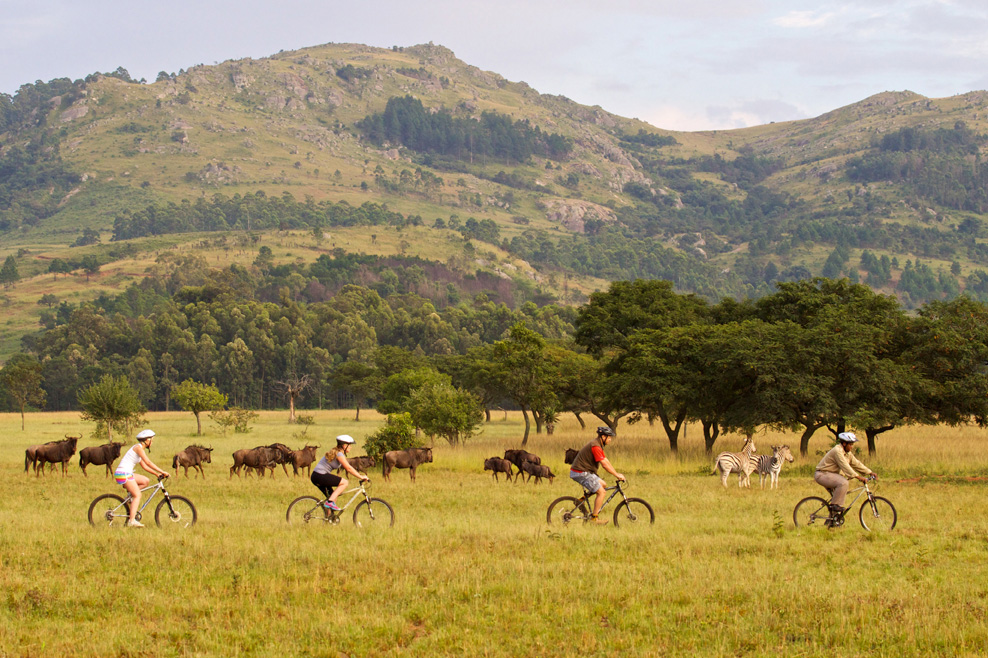 Mlilwane Mountain Biking. Picture by BigGameParks Jun2015