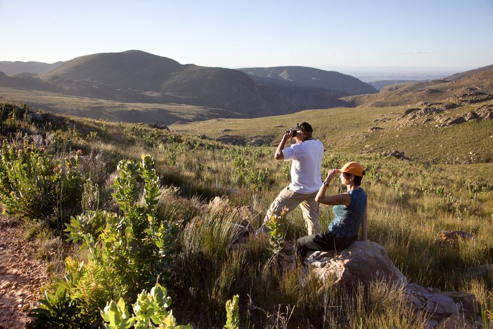Swartberg-courtCapeNature