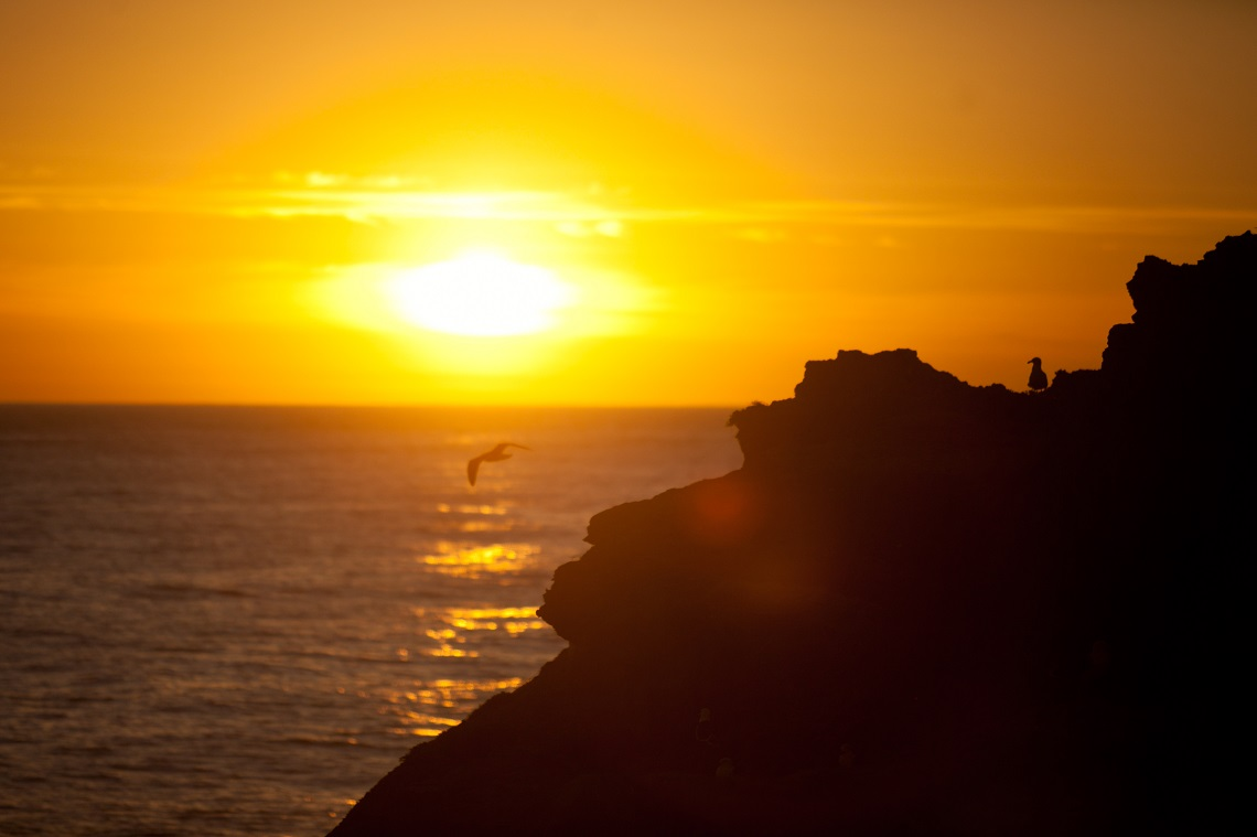 Wild sunrise-Robberg Nature Reserve-Court CapeNature